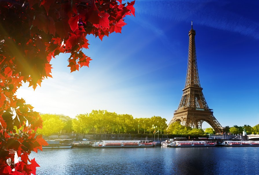 129139__la-tour-eiffel-eiffel-tower-eiffel-tower-paris-paris-france-france-the-trees-the-river_p